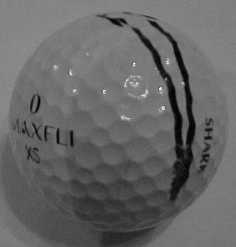 Greg Norman's Lost Ball From 1999 Master's Golf Tournament!